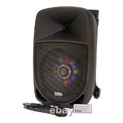 PLS 300W Portable Sound System Bluetooth Garden Party Speaker Karaoke DJ Disco