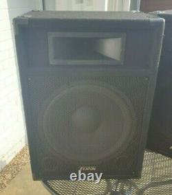 Paire Fenton Csb15 Pa Speakers Active 15 Accueil Karaoke Disco Party 800w Power